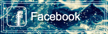 Facebook-FollowButton